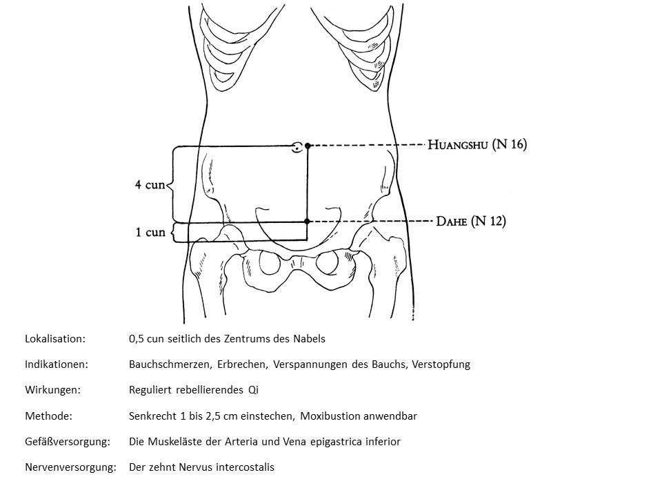 Akupunkturpunkt Niere 16