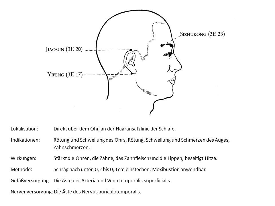 Akupunkturpunkt 3Erwärmer 20