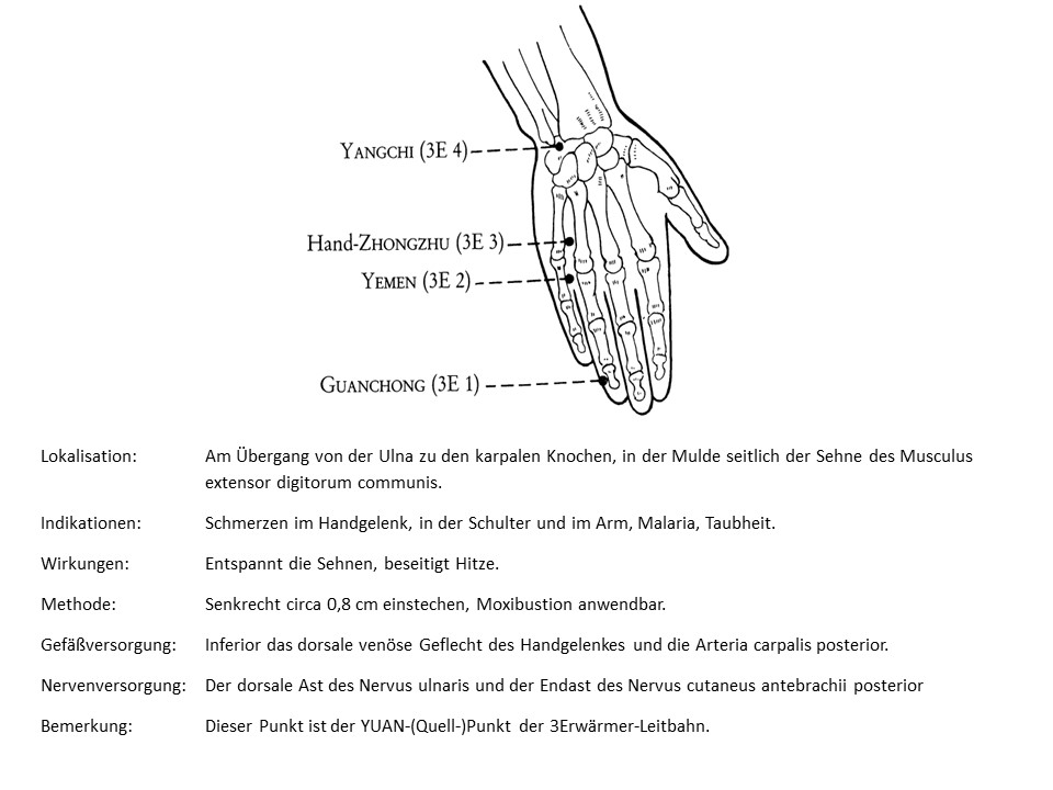 Akupunkturpunkt 3Erwärmer 4