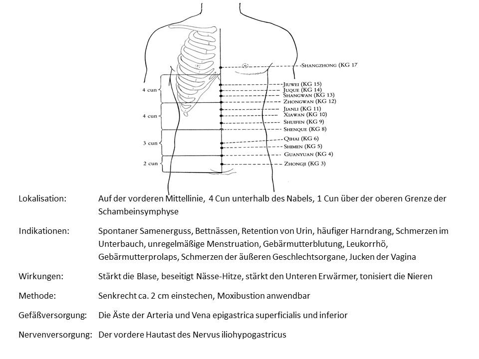 Akupunkturpunkt Konzeptionsgefäß 3