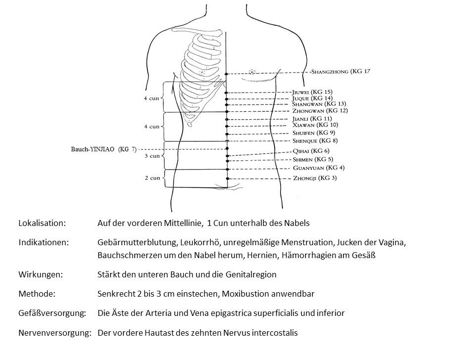 Akupunkturpunkt Konzeptionsgefäß 7