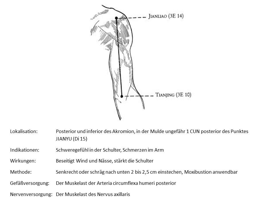 Akupunkturpunkt 3Erwärmer 14