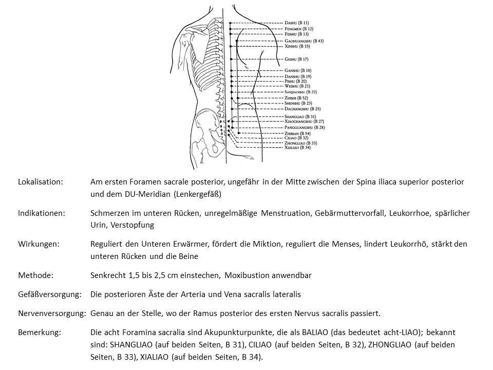 Akupunkturpunkt Blase 31