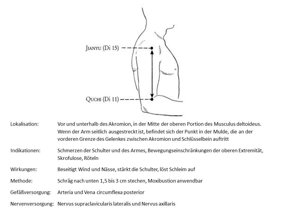 Akupunkturpunkt Dickdarm 15
