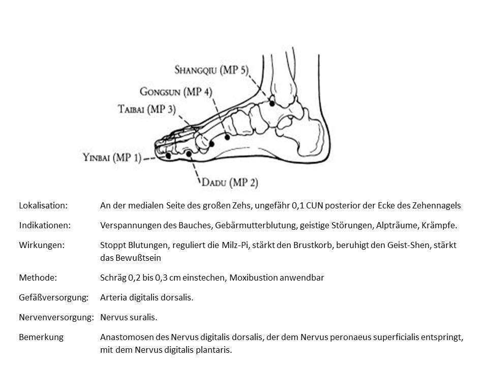 Akupunkturpunkt Milz 1