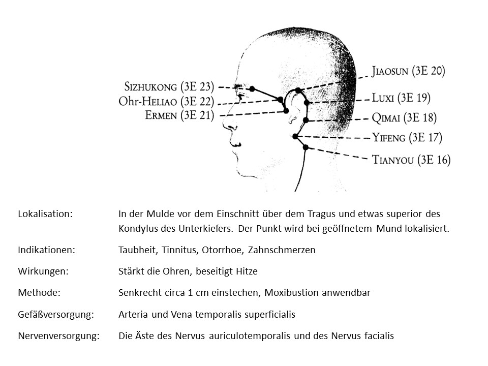 Akupunkturpunkt 3Erwärmer 21
