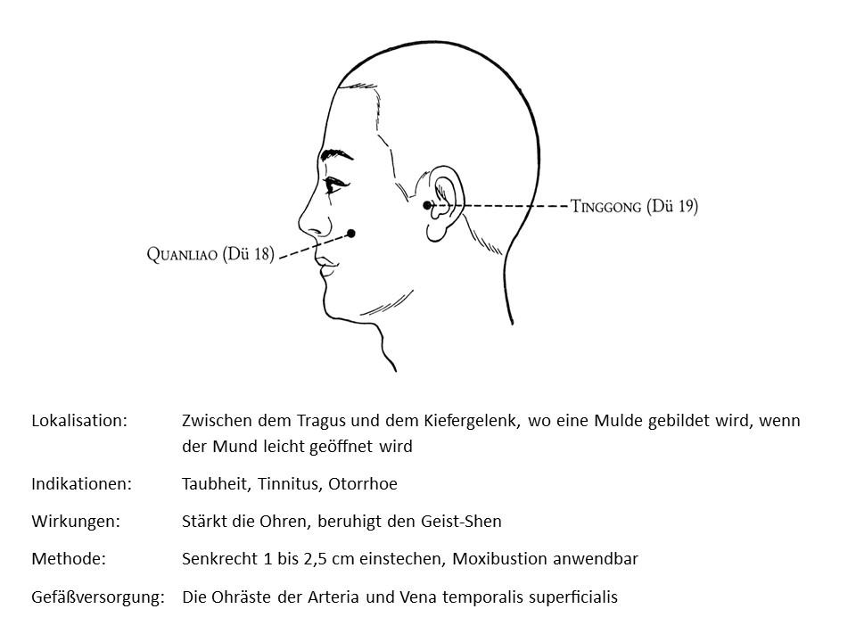 Akupunkturpunkt Dünndarm 19