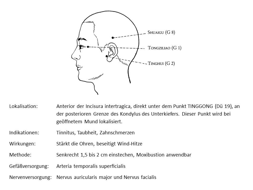 Akupunkturpunkt Gallenblase 2