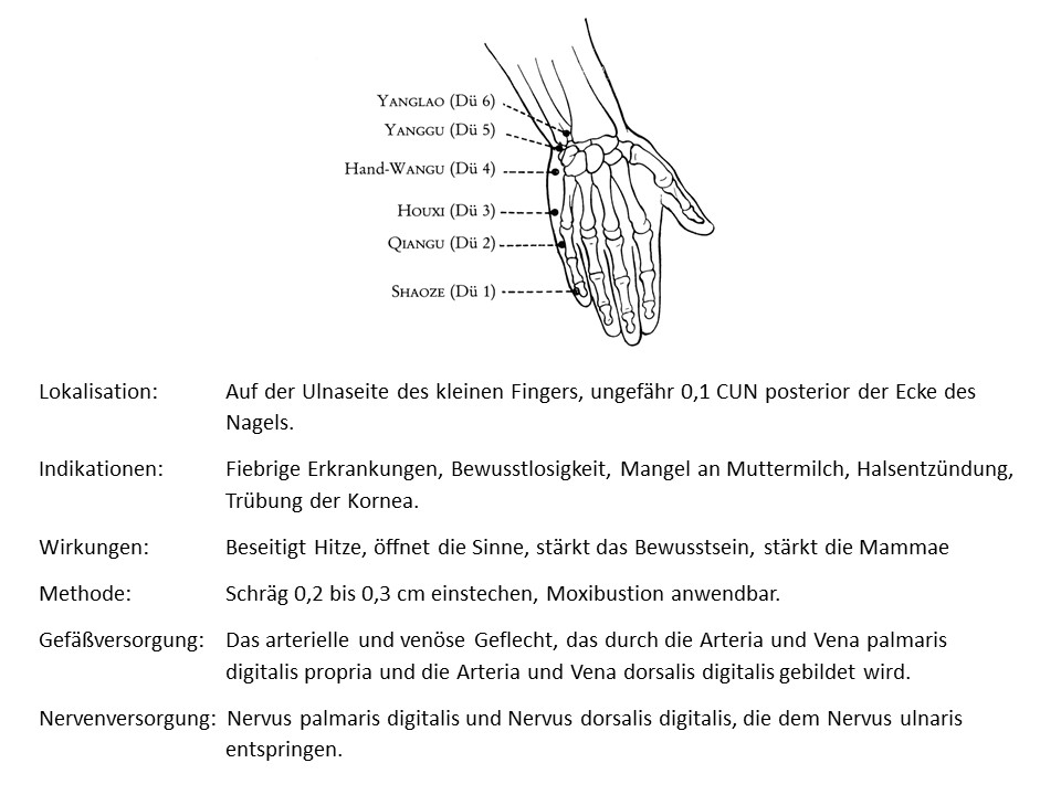 Akupunkturpunkt Dünndarm 1