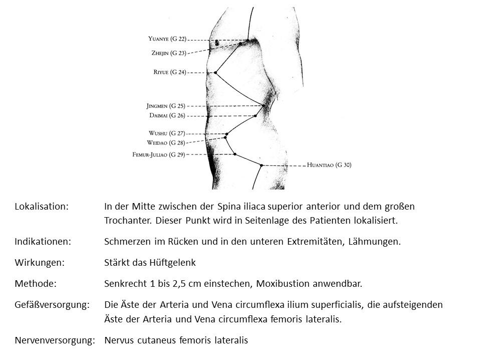 Akupunkturpunkt Gallenblase 29