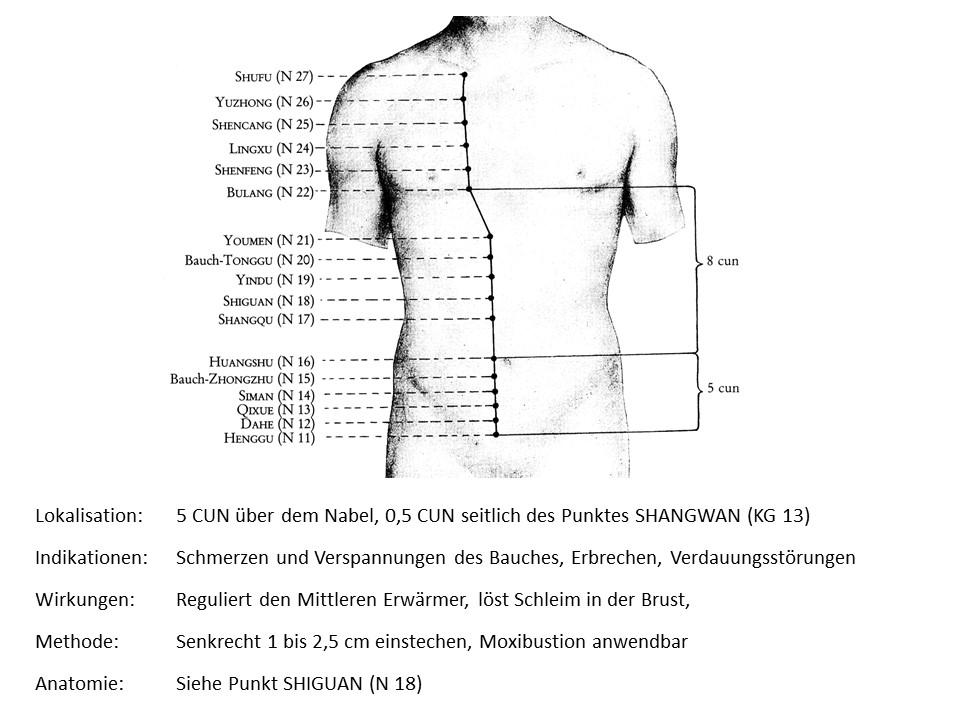 Akupunkturpunkt Niere 20