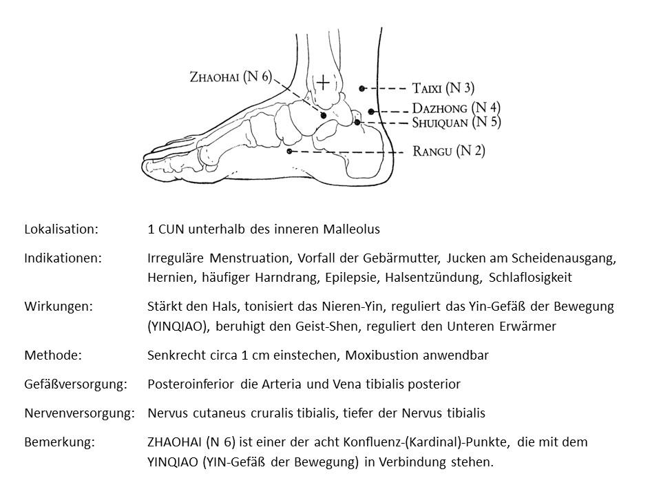 Akupunkturpunkt Niere 6