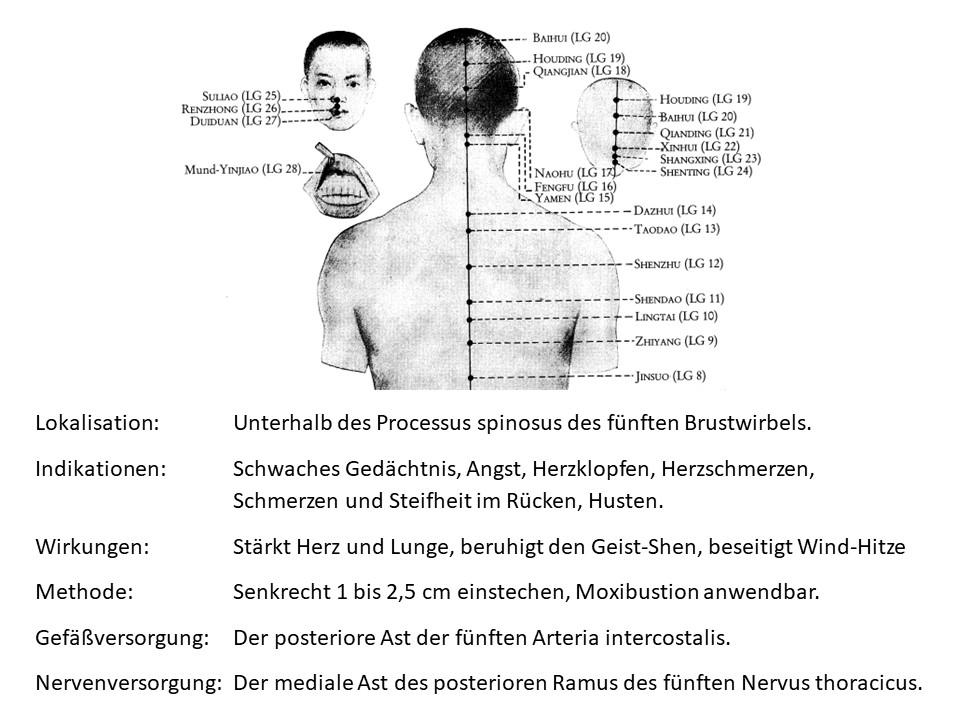 Akupunkturpunkt Lenkergefäß 11