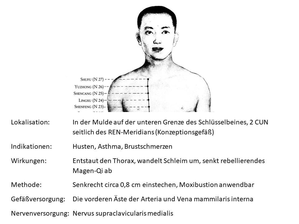 Akupunkturpunkt Niere 27