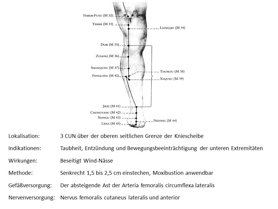 Akupunkturpunkt Magen 33