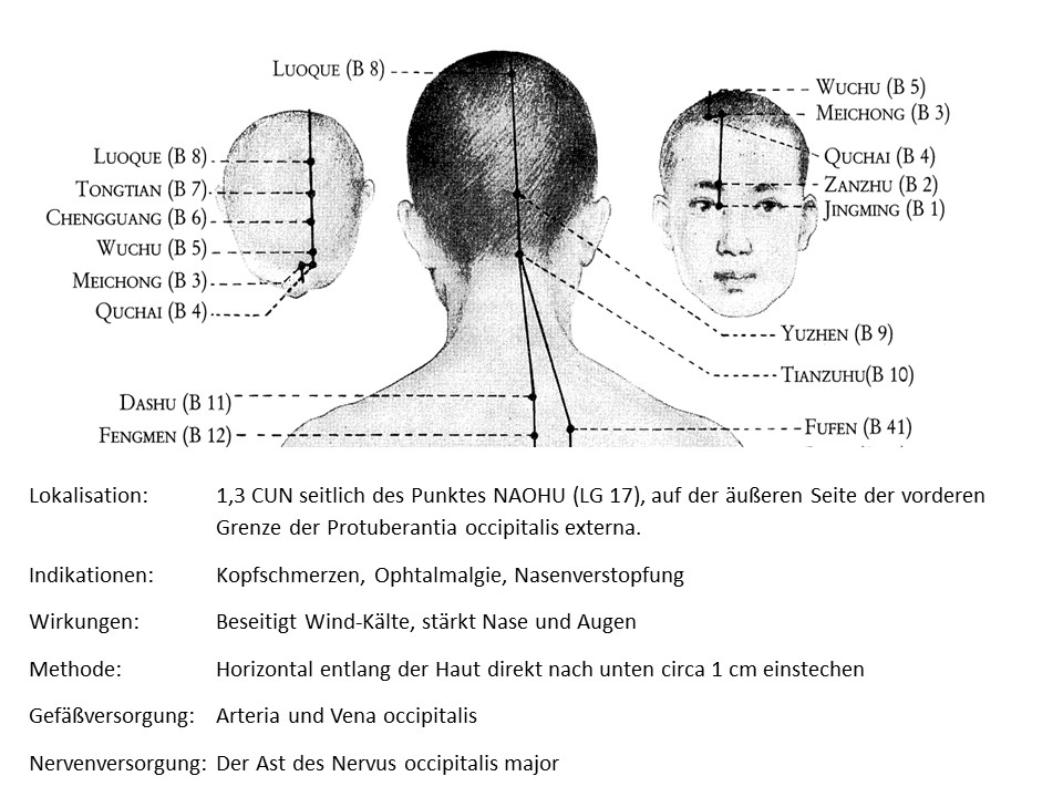 Akupunkturpunkt Blase 9