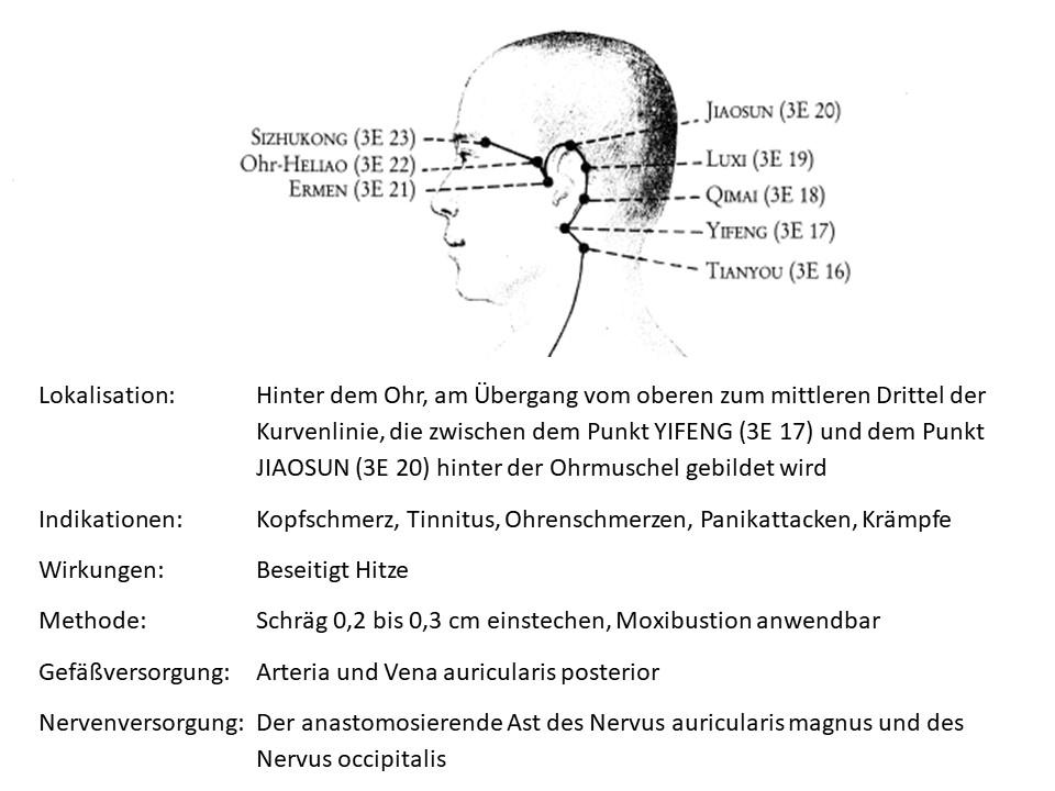 Akupunkturpunkt 3Erwaermer 19