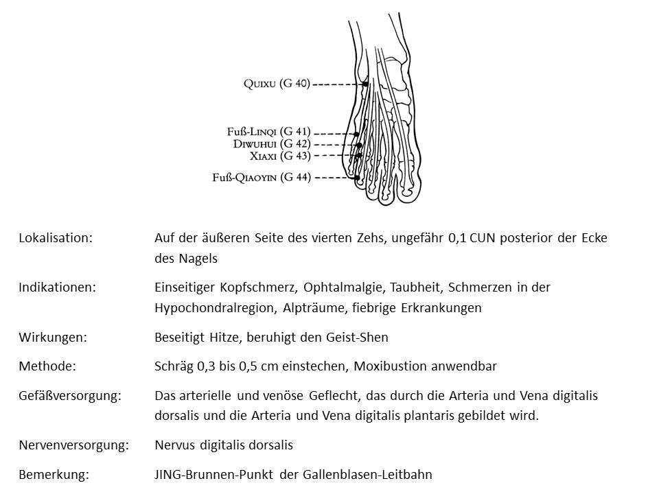 Akupunkturpunkt Gallenblase 44