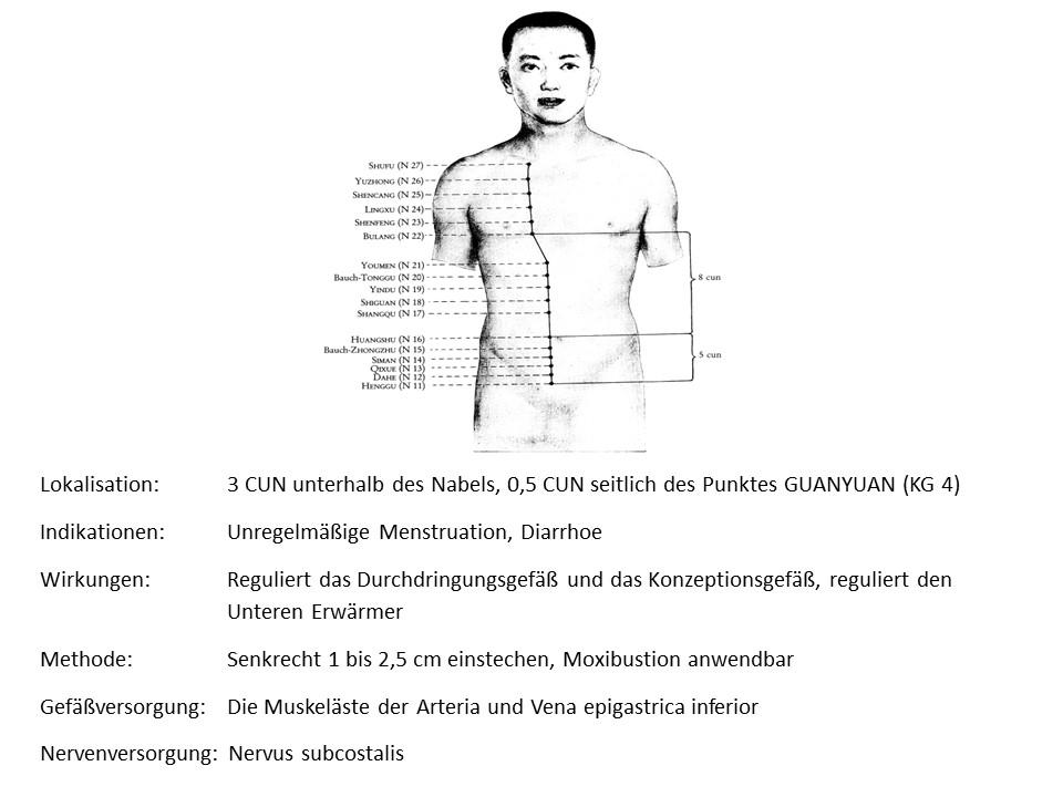 Akupunkturpunkt Niere 13