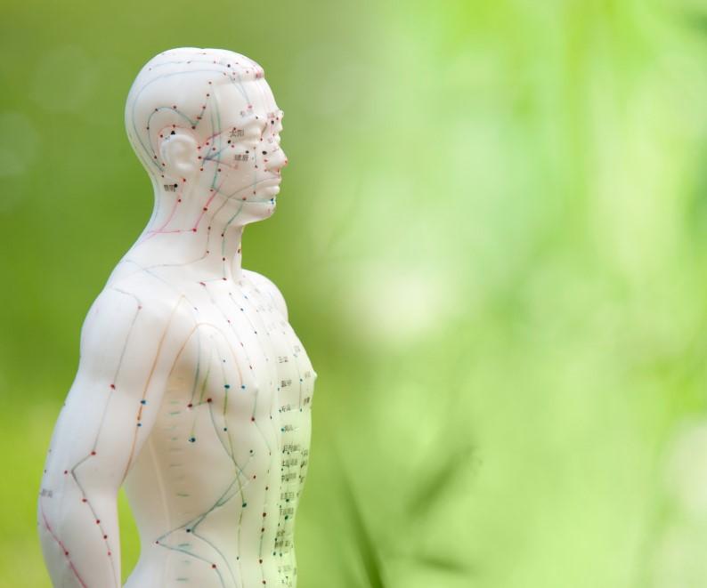 Asthma: Akupunktur und Moxibustion der Zustimmungspunkte