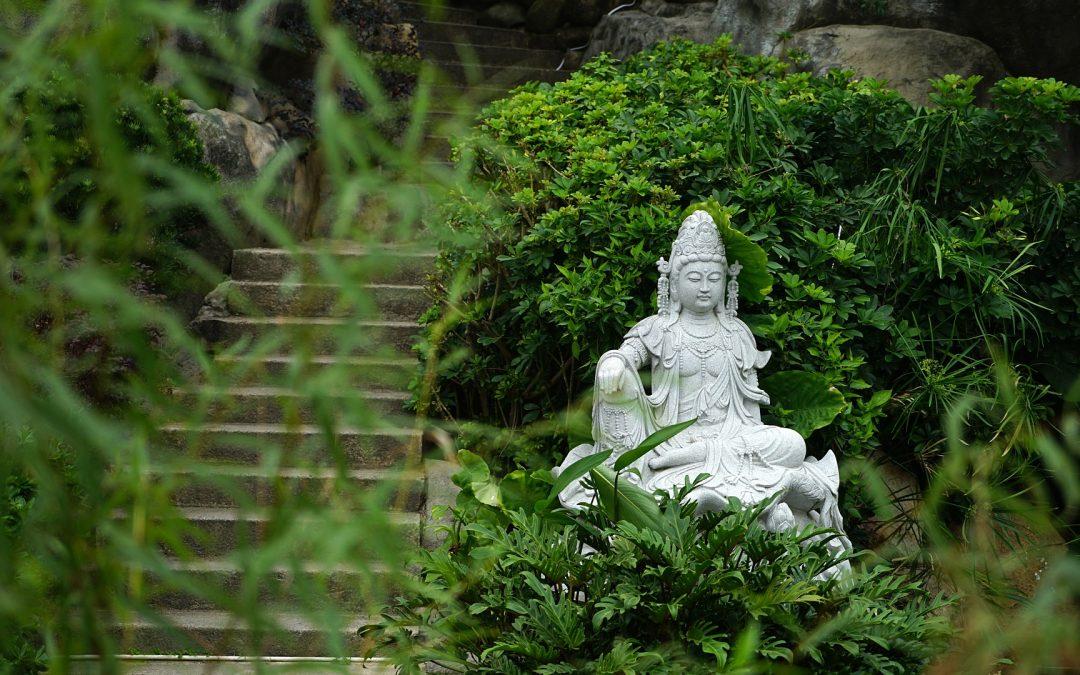 Asthma: Akupunktur der Extrapunkte chuǎn xí und píng chuǎn sowie Blase 13 (fèi shū)